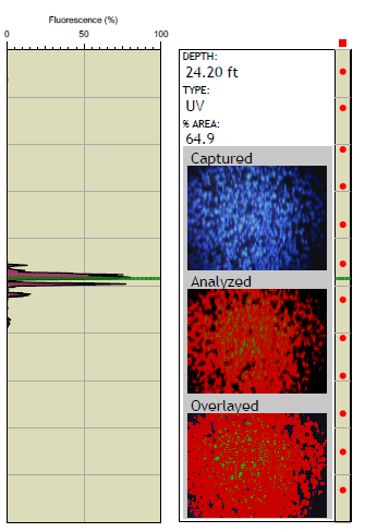 OIP Fluorescence Log with Depth Specific Image and Software Image Analysis